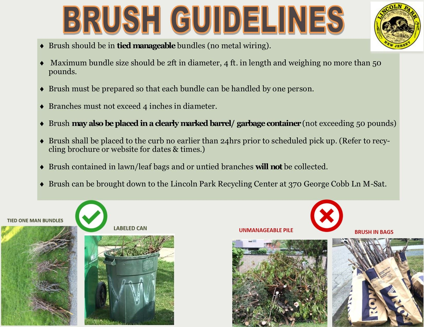 BRUSH FLYER NEW GUIDELINES